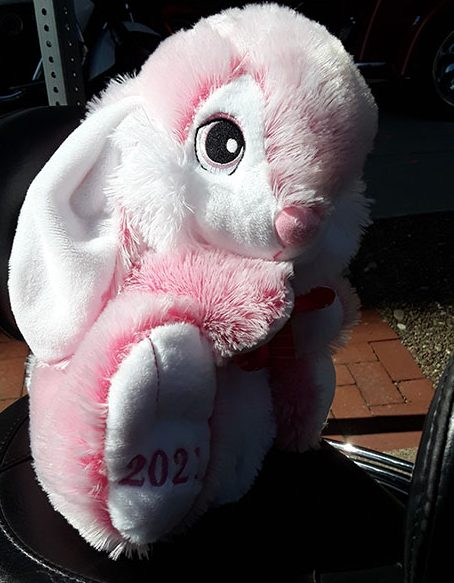 SCPAVRA April 2021 Bunny Run!